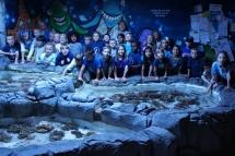 Highlight for album: Emily Aquarium Field Trip