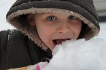 Highlight for album: Snow Much Fun, 2013