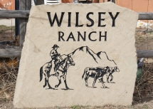 Highlight for album: Wilsey Ranch, March 2012